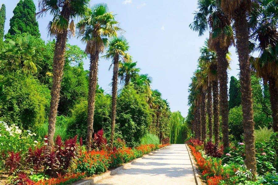 Аллея для прогулок по саду