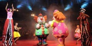 Представление в цирке Риги
