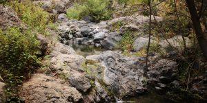 Родниковый ручей из ущелья