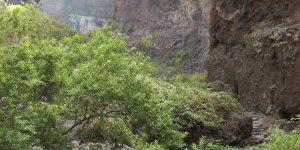 Скалы на трассе к ущелью