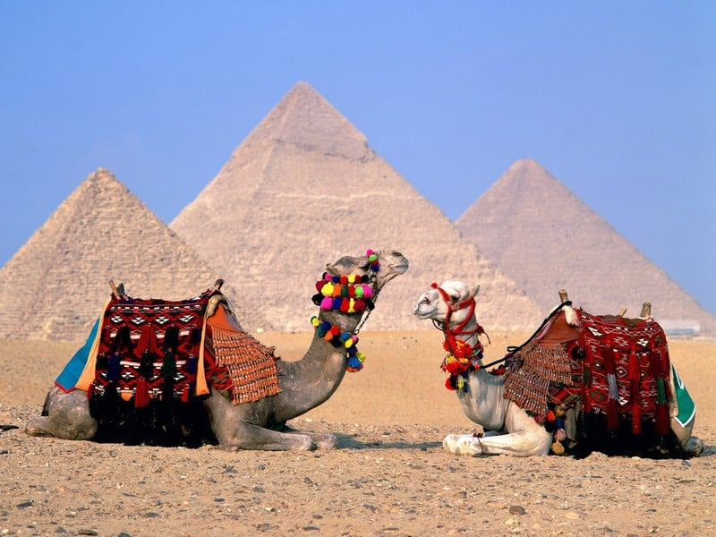 Тунис или Египет