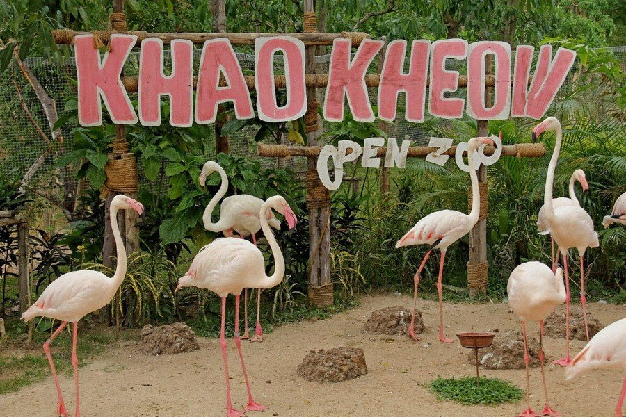 "Зоопарк ""Кхао Кхео"""