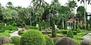В тропической зелени