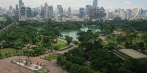 Вид на территорию парка с высоты