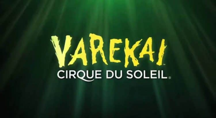 "Шоу ""Varekai"" от цирк ""Дюсолей"""