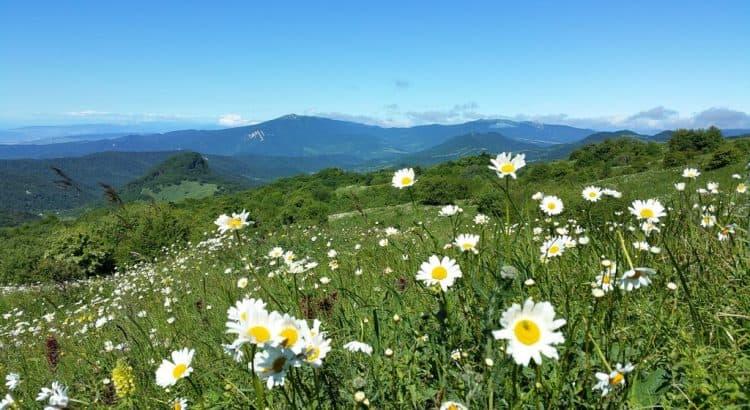 Малый горный хребет Кавказа