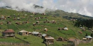 Жилища в поселке Бешуми