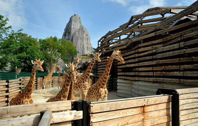 Венсенский зоопарк