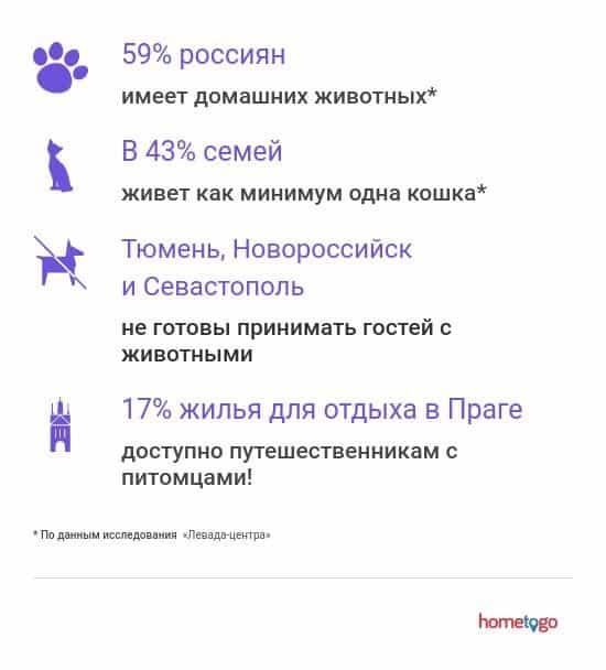 Путешествия с домашними животными факты