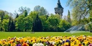 Парк на острове